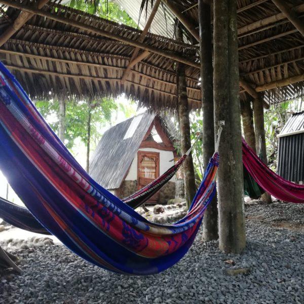 Common area with hammocks